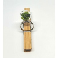 TERRARIUM GLASS RING