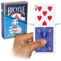 BICYCLE RISING CARD