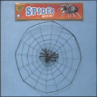 SPIDER WITH WEB